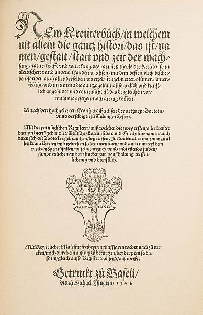 Schuler Auktionen AG - Fuchs, Leonhart