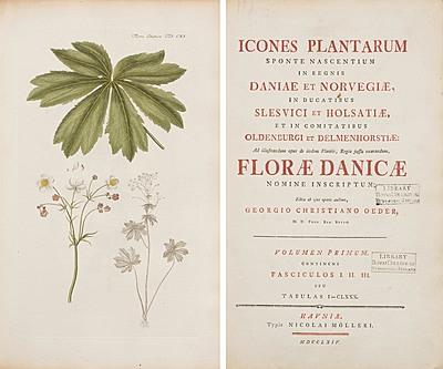 Schuler Auktionen AG - Flora Danica